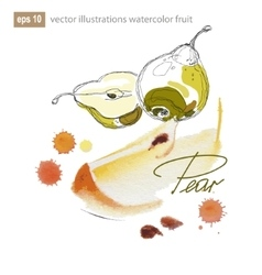 set of watercolor fruits vector image vector image