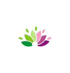 lotus flower logo vector image