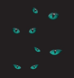 Cat eyes in the dark vector image