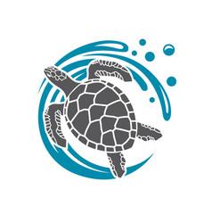 Sea turtle icon vector