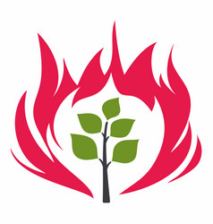 Burning bush vector