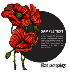 Hand drawn red poppies with space for text floral vector