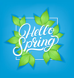 hello spring hand written lettering vector image