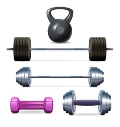 Dumbbells barbells and weight vector