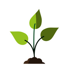 Green plant icon image vector
