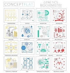 Infographics mini concept genetics and vector
