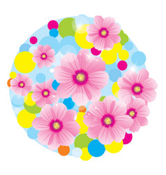 Pink flowers cosmos circle vector