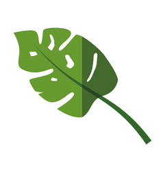 Plant ecology symbol vector