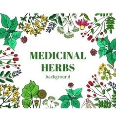 Wild medicinal herbs background vector