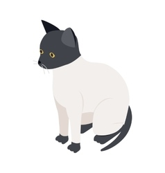 Ragdoll cat icon isometric 3d style vector image vector image