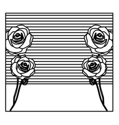 Silhouette background with roses and striped lines vector