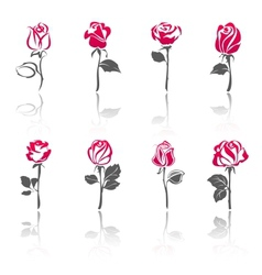 Rose icon set vector