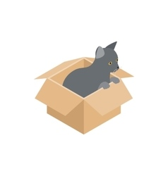 Kitten in box icon isometric 3d style vector