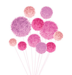 Bouquet of pom poms baby girl pink vector
