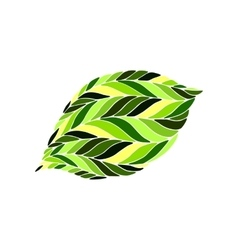 image of a leaf in shades green on white vector image vector image
