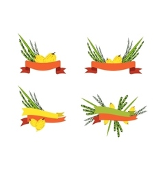 Sukkot collection four symbols of jewish holiday vector