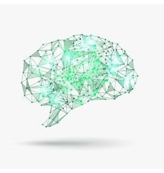 Low poly human brain vector image