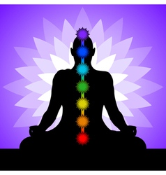 Yogi with chakras vector