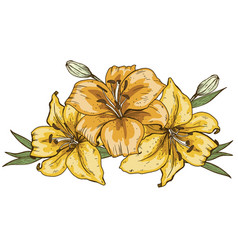 Bouquet of three yellow lily flowers hand drawn vector