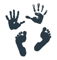 Imprint of children s palms and feet vector