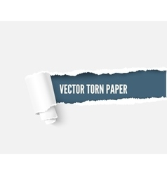 Torn paper with space for your message realistic vector