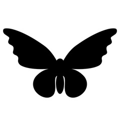 Abstract butterfly silhouette isolated on white vector