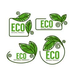 doodle organic leaves emblems elements frames vector image