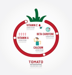 Infographic tomato health concept vector image vector image