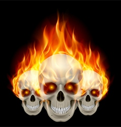 Three flaming skulls vector image vector image