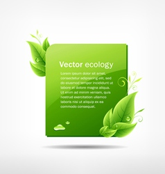 Frame green leaf ecology vector