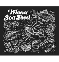 Menu seafood hand drawn fish carp sea eel vector