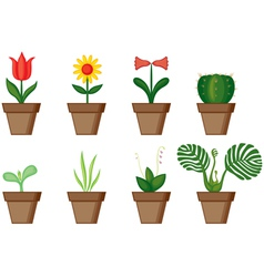 Window plants vector image