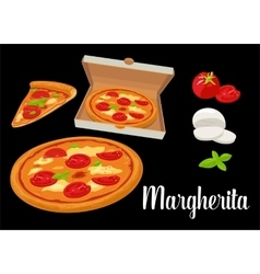 Whole pizza and slices of pizza margherita in open vector