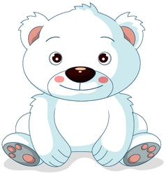 cute polar bear cartoon vector image vector image
