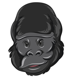 Gorilla head with happy face vector