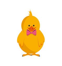 little chicken cartoon vector image vector image