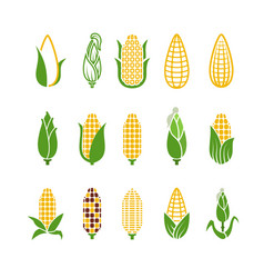 organic corn icons isolated on white vector image vector image
