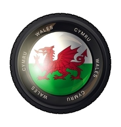 Wales flag icon vector image