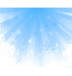 white snow vector image vector image