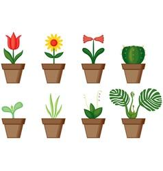 Window plants vector image vector image
