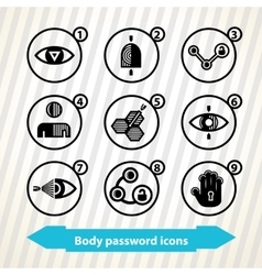 Body password icons vector