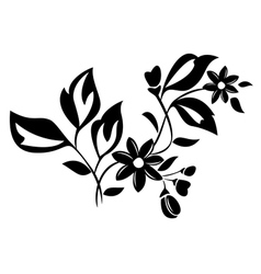 Black herbal element for design vector