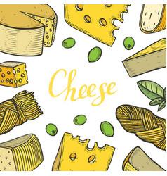 Cheese milk vector