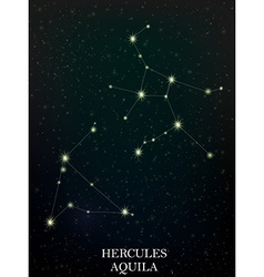 Hercules and Aquila constellation vector image vector image