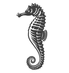 Monochrome sea horse icon vector