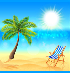 Palm and deck chair on sunny beach vector