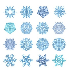 Various winter snowflakes t vector