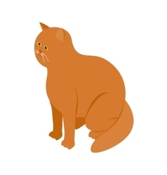 Big orange cat icon isometric 3d style vector
