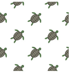 Green sea turtle pattern seamless vector