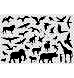 Set of animals silhouettes isolated vector